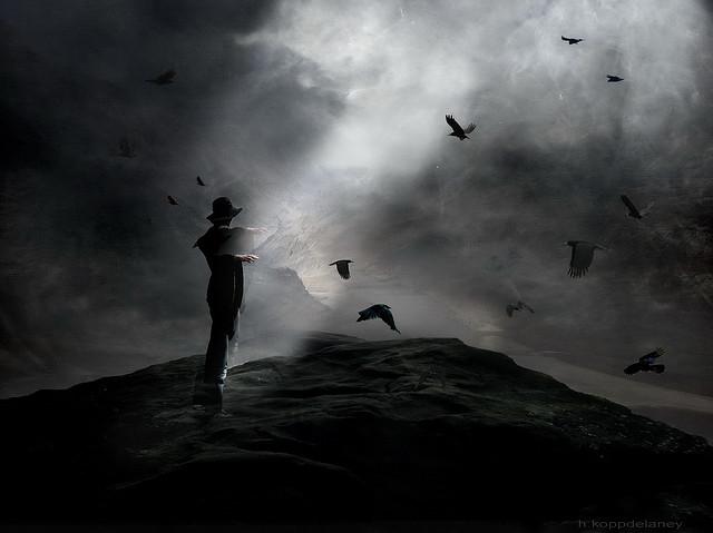 Crows Rock by Hartwig HKD flickr CC